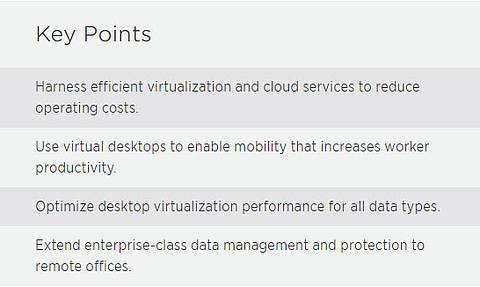 NetApp Key Points Virtulization