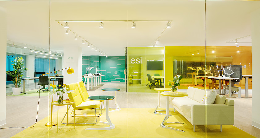 showroom_motific_brighter