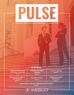 Thumbnail of Government Pulse PDF